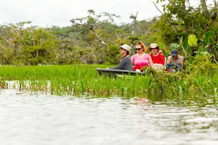 barca da pesca: Tourists Fishing Legendary Piranha Fish In Ecuadorian Amazonian Primary Jungle