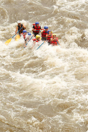 raft: Group Of Mixed Tourist Men And Women With Guided By Professional Pilot On Whitewater River Rafting In Ecuador