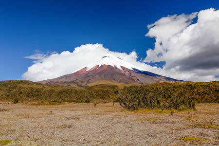 black forest: Cotopaxi Is A Volcano In The Andes Mountains Near Quito Ecuador It Is The 2Nd Highest Summit In The Country Stock Photo