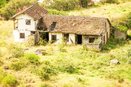 damaged roof: Abandoned House In Southern Ecuador