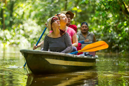 Tourist Boat Navigating On Murky Amazonian Water In Cuyabeno Wildlife Reserve Standard-Bild