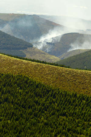 deliberately: High Altitude Forest Deliberately Set To Fire In Andes Highlands Stock Photo