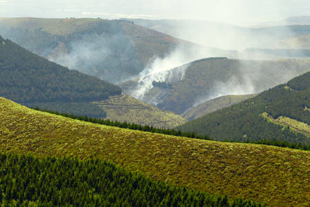 induced: High Altitude Forest Deliberately Set To Fire In Andes Highlands Stock Photo