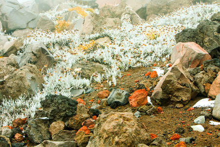 Misty Blue Haze Over The Cotopaxi Volcano Ecuador Expodisc Calibrated White Balance Stock Photo