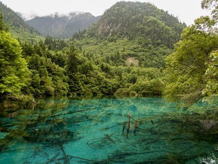 natual: Five Flower Lake at Jiuzhaigou Valley National park in China Stock Photo
