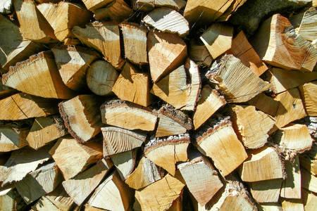 logs: The logs