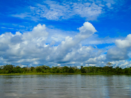 rio amazonas: Amazon river