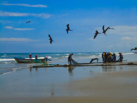 approximately: SAN CLEMENTE, ECUADOR - APRIL 7, 2015: Unidentified fishermen on San Clemente beach in Ecuador. San Clemente is a fishing village with approximately 2000 inhabitants.