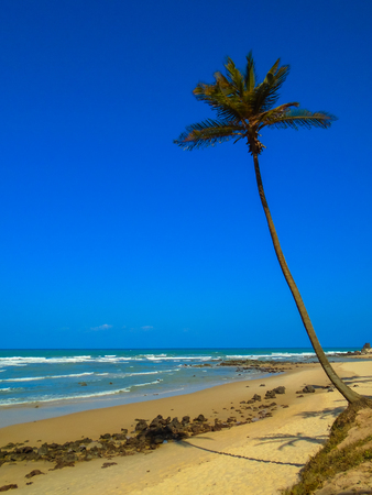 View at the Pipa beach in Brazil Stock Photo