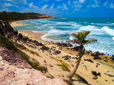 pipa: View at Pipa Beach in Brazil Stock Photo