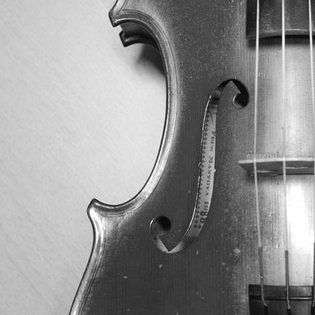 black white violin it soft feeling photo