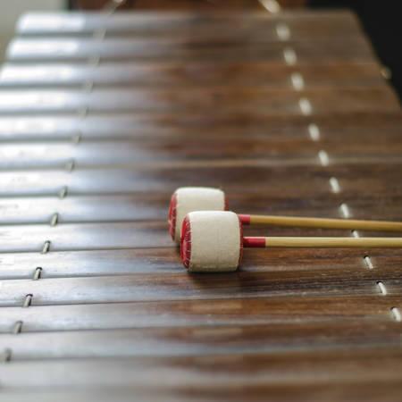 tuneful: thai alto xyolphone asia music of Thailand