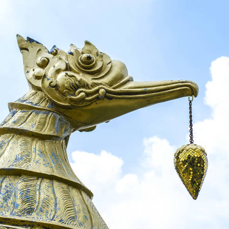 Thai swan see in temple of Thailand photo