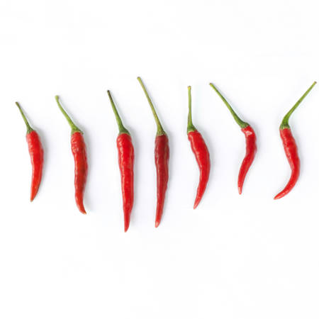 pepper isolated on white background