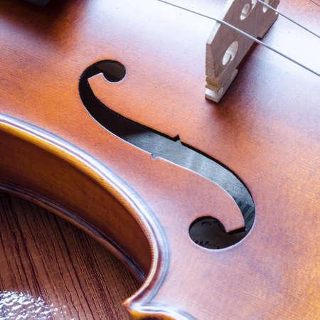 string instrument violin on wood background photo