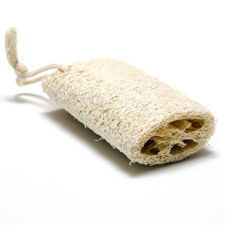 skin Loofah isolated on a white photo