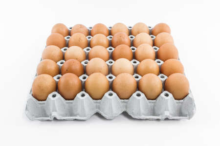 Eggs in the  paper tray package isolated on white background. Фото со стока