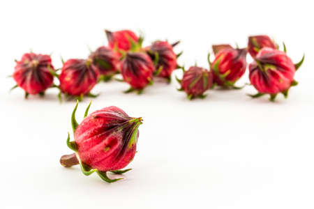 Hibiscus sabdariffa or roselle fruits  isolated on white background.  photo