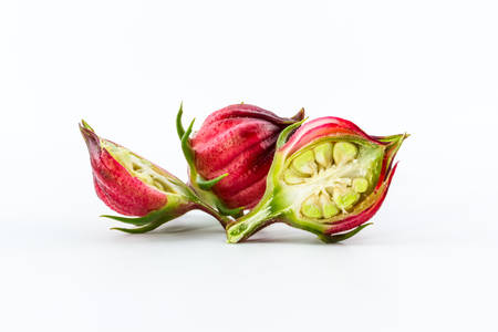 Hibiscus sabdariffa of Roselle vruchten geïsoleerd op een witte achtergrond.