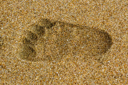 Baby right footprints in the sand of a beach