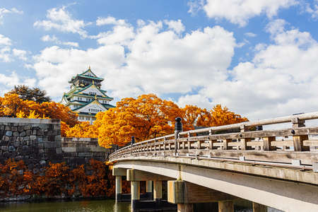 Osaka Castle in Osaka  with autumn leaves, Japan