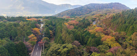 Panaroma of beautiful forest of autumn leaves in Hakone, Japan. photo