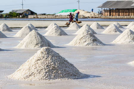 Farmers are harvesting salt in the salt fields, south of Thailand. Imagens