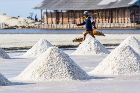 Farmers are harvesting salt in the salt fields, south of Thailand. Reklamní fotografie