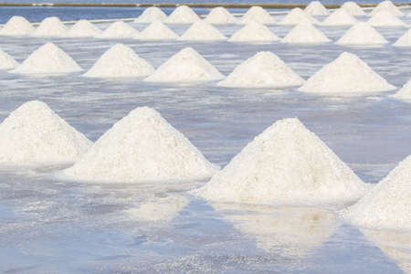 salt crystal: Farmers are harvesting salt in the salt fields, south of Thailand. Stock Photo