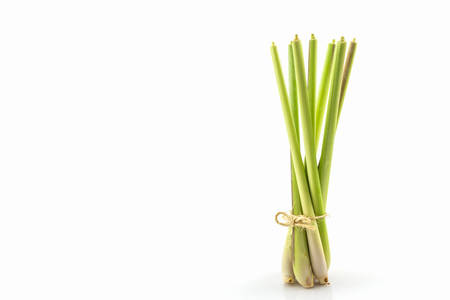 Lemon grass or Oil grass on white background. Imagens