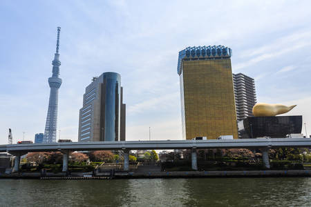 sumida ward: Tokyo, Japan - April 9, 2016: View of the Tokyo skyline from across the Sumida River in Asakusa including landmarks such as the Skytree and the Asahi headquarters in Tokyo, Japan.
