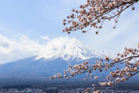 Mount fuji at Lake kawaguchiko in the morning. Sakura season in Japan. Stock Photo