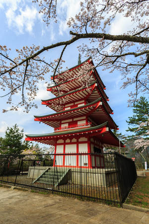 combination: Chureito Pagoda in Arakura Sengen Shrine area is viewpoint of Mount Fuji in combination with cherry blossoms and autumn colors popular.
