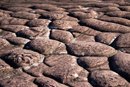 multi layered: Layers of sedimentary sandstone rock.