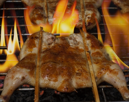 Grilled chicken  on the grill photo