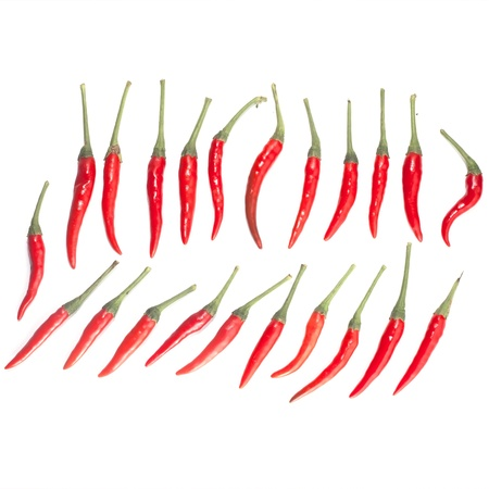 red  chili peppers isolate with background Stock Photo - 20164074