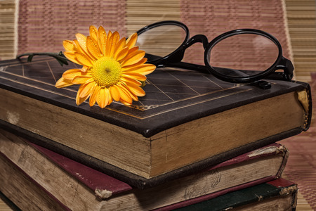 vintage book and flower