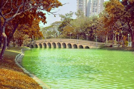 garden city: Bridge in the plublic garden city