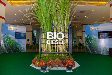 BANGKOK - JUNE 4   Biodeisell and Gasohol from plam oil and cane tree at Renewable Energy Environmental Technology on June 4,2014 in BITEC ,Bangkok, Thailand