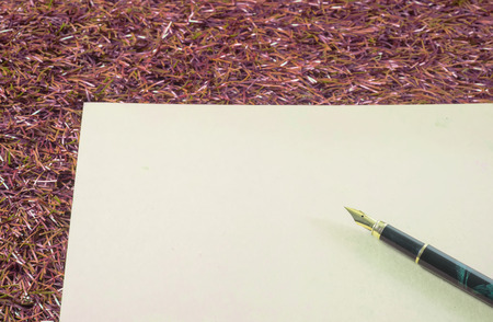 red grass: black and gold fountain pen, ink pen on brown  note book on red grass Stock Photo