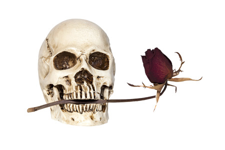 jawbone: Human skull with dry rose in mouth