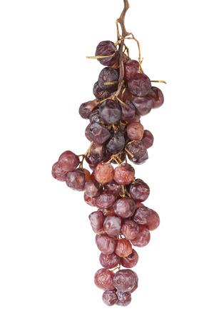 sear: sear grape on white background