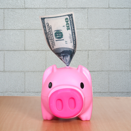 putting: Putting dollar in funny piggy bank.