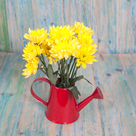 watering pot: bunch of flowers in the watering pot  on wood background