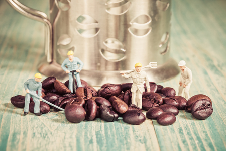miniature people: Miniature people working with coffee bean ,selective focus