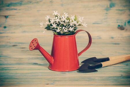 Small plant in a red watering can and garden tool.