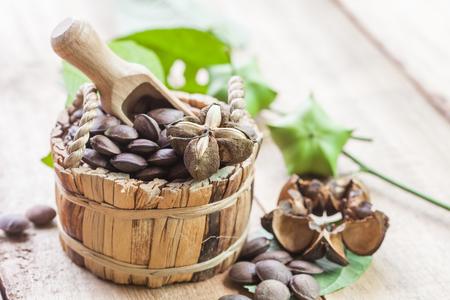 乾燥されたカプセルの木のバスケットでサシャ インチ ピーナッツの果実を種子します。