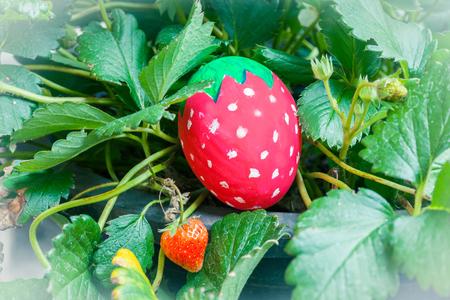 Strawberry ester egg in strawberry tree
