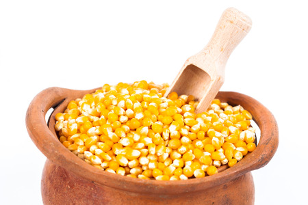 Close up corn seed in clay pot with wooden spoon on white background