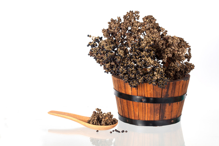 Zanthozylum limonella Alston herb test hot and spices on white background